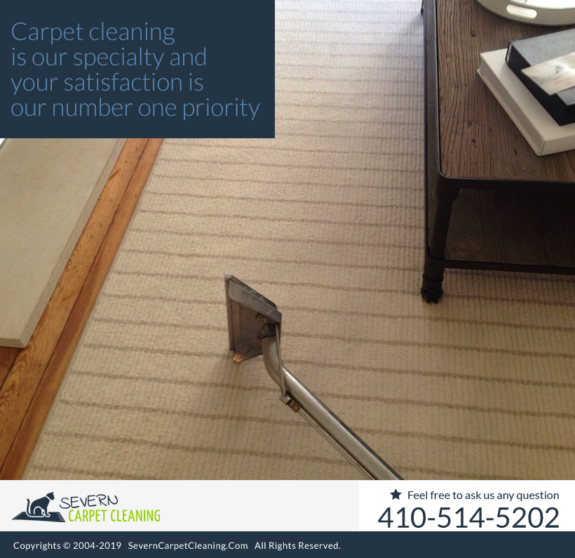 CarpetProfessionalCleaning
