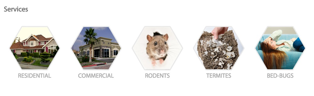 Hydrex Termite & Pest Control in Culver City offers residential, commercial, rodent, termite and bed-bug services.