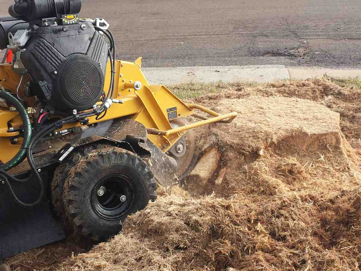 fort-collins-stump-grinding