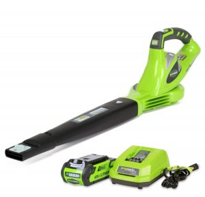 Greenworks-40V-150-MPH-Variable-Speed-Cordless-Blower-300x288