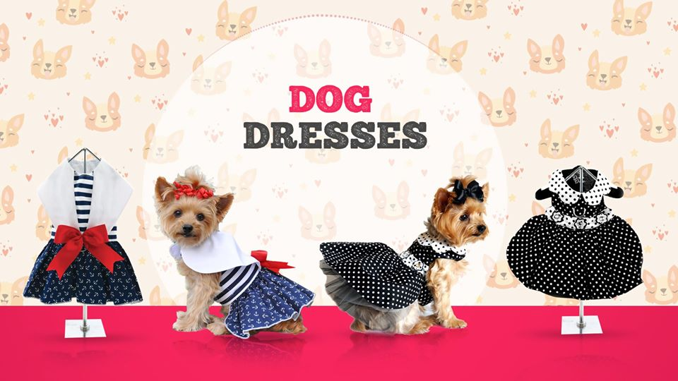fashion clothes for dogs