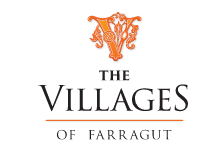 The Villagers f