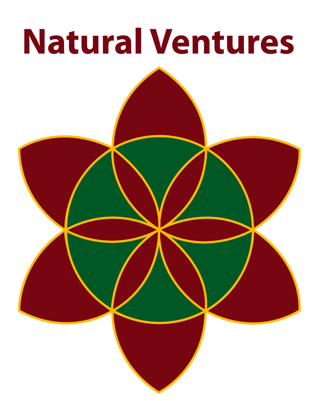 natural ventures_logo_600px_white background-01